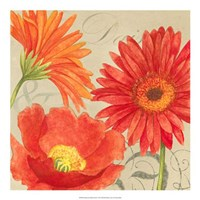 """Daisies & Tulips II by Vision Studio - 19"""" x 19"""""""