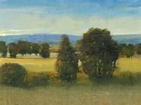 Verdant Meadow I Framed Print