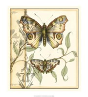 "Tandem Butterflies I by Jennifer Goldberger - 17"" x 20"", FulcrumGallery.com brand"