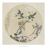 Oriental Bird Silk I Fine Art Print