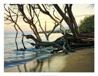 """Reaching for the Sea I by Danny Head - 26"""" x 20"""""""