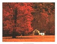 Farm House on a Autumn Morn' Fine Art Print