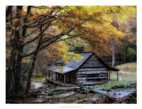 """Damp Autumn Day by Danny Head - 26"""" x 20"""""""