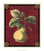 Poire De Portugal Fine Art Print
