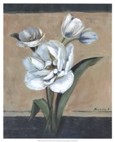 "White Tulips II by Marietta Cohen - 17"" x 21"""