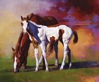 Hot Color Fine Art Print