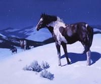 Painted Night Fine Art Print