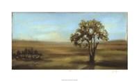 "Panoramic Field I by Jennifer Goldberger - 36"" x 21"", FulcrumGallery.com brand"