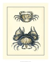 "Antique Blue Crabs I by Vision Studio - 18"" x 22"""