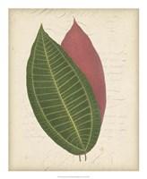 "Textured Leaf Study I by Vision Studio - 18"" x 22"" - $27.99"