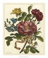 Floral Posy II Fine Art Print