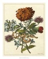 Floral Posy III Fine Art Print