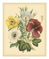 Garden Bouquet I Fine Art Print