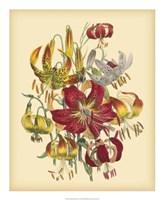 Garden Bouquet III Fine Art Print