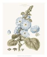 Bashful Blue Florals IV Fine Art Print