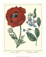 Gardener's Delight I Fine Art Print