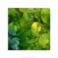 "Nautilus in Green II by Sharon Gordon - 22"" x 22"""