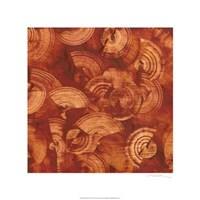 Nautilus in Rust II Fine Art Print