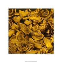 Nautilus in Gold I Fine Art Print