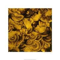 Nautilus in Gold II Fine Art Print