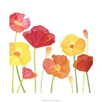 """Simply Poppies I by Megan Meagher - 22"""" x 22"""""""
