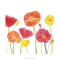 """Simply Poppies II by Megan Meagher - 22"""" x 22"""""""