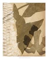 "Pressed Leaf Assemblage III by Vision Studio - 18"" x 22"" - $27.99"