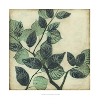 "Graphic Leaves II by Jennifer Goldberger - 22"" x 22"", FulcrumGallery.com brand"
