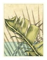 "Tropical Shade I by Ethan Harper - 18"" x 23"""