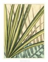 "Tropical Shade II by Ethan Harper - 18"" x 23"""