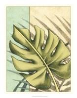 "Tropical Shade III by Ethan Harper - 18"" x 23"""