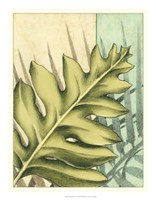 "Tropical Shade IV by Ethan Harper - 18"" x 23"""