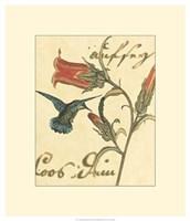 "Hummingbird Reverie III by Vision Studio - 20"" x 23"""