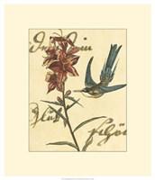 "Hummingbird Reverie IV by Vision Studio - 20"" x 23"""