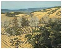 "Winter Vineyard by Silvia Rutledge - 29"" x 23"""