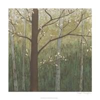 "Hudson River Forest I by Megan Meagher - 24"" x 24"""