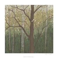 """Hudson River Forest II by Megan Meagher - 24"""" x 24"""""""
