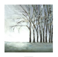 Tree in Winter Fine Art Print