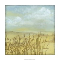 "Through the Wheatgrass I by Jennifer Goldberger - 24"" x 24"""