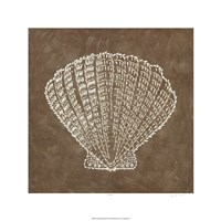 "Embroidered Shells III by Chariklia Zarris - 24"" x 24"""