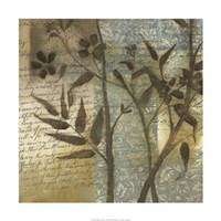 "Wildflower Tapestry I by Jennifer Goldberger - 24"" x 24"""