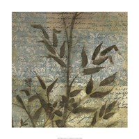 "Wildflower Tapestry II by Jennifer Goldberger - 24"" x 24"""