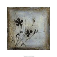 "Silhouette Memory II by Jennifer Goldberger - 24"" x 24"""