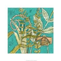 "Tropical Melange I by Jennifer Goldberger - 24"" x 24"""