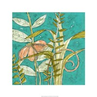 "Tropical Melange II by Jennifer Goldberger - 24"" x 24"""