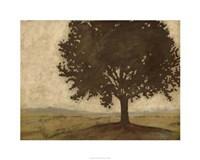 "Shenandoah Vista II by Megan Meagher - 30"" x 24"""