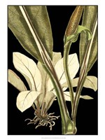 """Tranquil Tropical Leaves V by Vision Studio - 18"""" x 24"""" - $40.49"""