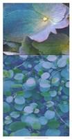 Hydrangea Mix I Fine Art Print