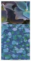 Hydrangea Mix II Fine Art Print