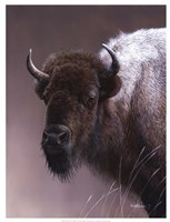 "19"" x 25"" Buffalo Art"
